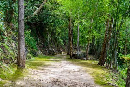 Natural path at the Hellfire Pass Trail, Death Railway - The Second World War memorial in Kanchanaburi, Thailand.