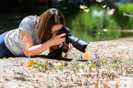 women photographers take photos Butterfly. Butterflies are feeding mineral in salt marsh in forest, kaeng krachan national park, thailand