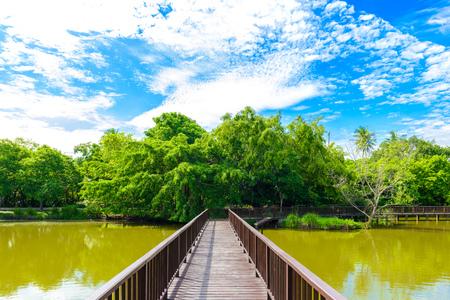Houten bruggang in Sri Nakhon Khuean Khan Park en Botanische Tuin. Bang krachao, Phra Pradaeng, Samut Prakan, Thailand Stockfoto
