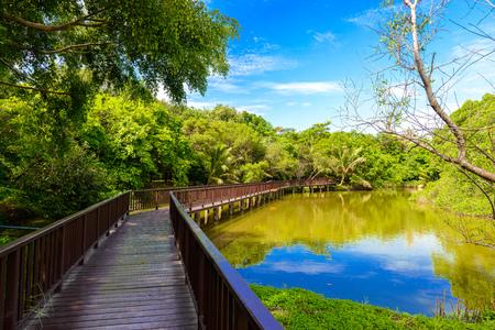 스리랑카 Khukan 칸 공원 및 식물원에서 목조 다리 산책로. Bang krachao, Phra Pradaeng, 사뭇 프라 칸, 태국