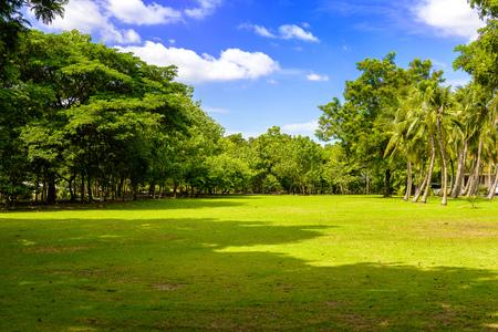 khan: The abundance of trees, blue skies and lawn at Sri Nakhon Khuean Khan Park and Botanical Garden. Bang krachao, Phra Pradaeng, Samut Prakan, Thailand
