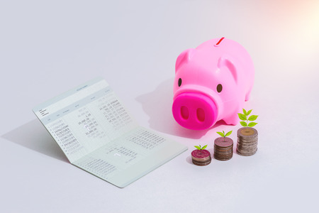 stack of coins, Little tree with piggy bank and account book bank on the table in saving, banking and finance concept