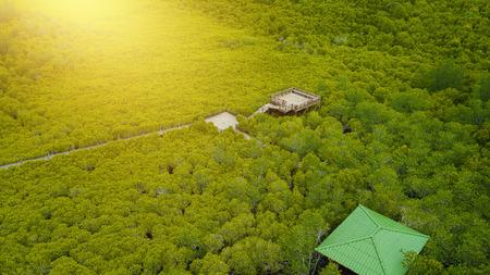 Aerial view, Viewpoint of Mangroves in Tung Prong Thong or Golden Mangrove Field at Estuary Pra Sae, Rayong, Thailand