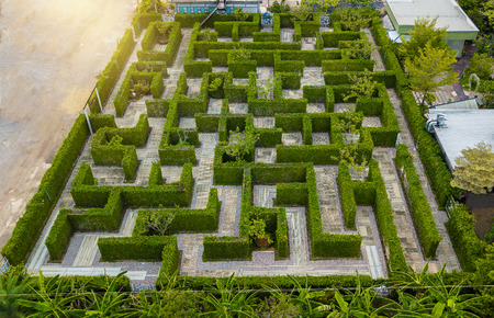 Aerial view of Garden Decoration is a maze with Green leaves wall fence with concrete bush or shrub trimming