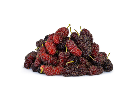 Heap of organic Mulberry fruits on white background