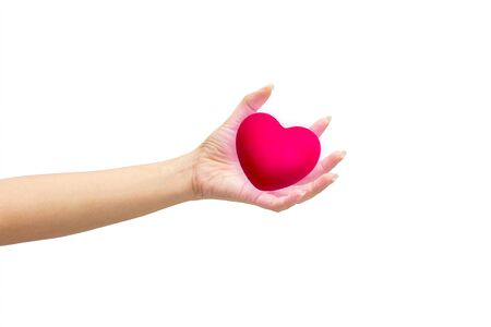 pink heart in man hands, isolated on white background. Stock Photo