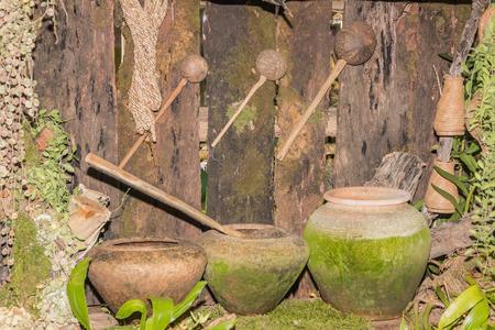 cáscara de coco Osa Mayor y olla de barro con el musgo verde en madera Foto de archivo