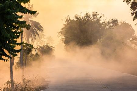 第三紀の煙に強い風を引き起こした火のそばの草は、環境を汚染します。