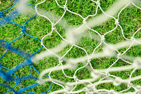 green grass and goal at the stadium. stadium is place for soccer or football match. people come for cheer their favorite team to win the tournament to champion