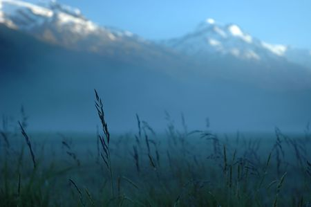 Morning mist in mountains. High grass, snowy peaks, first ray of sun.