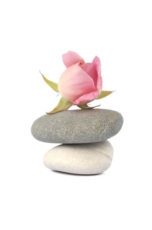 Two stones one on another in balance and a rose on top. Isolated on white.