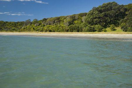 invitando: Invitar paisaje tropical Paradise Beach