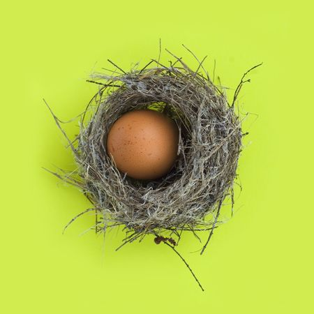 Easter egg in a real birds nest over green background