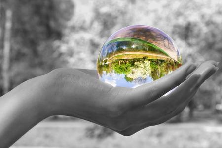 esfera de cristal: Abstracci�n. La esfera de cristal, establece en una palmera. El resultado brillante jard�n con un florecimiento de �rboles es visible en la esfera. Todos los dem�s - es decoloured y borroso.