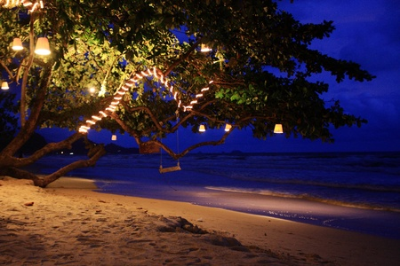 night scene sea and swing photo