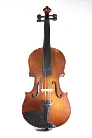 violin isolated on white Stock Photo - 16877619