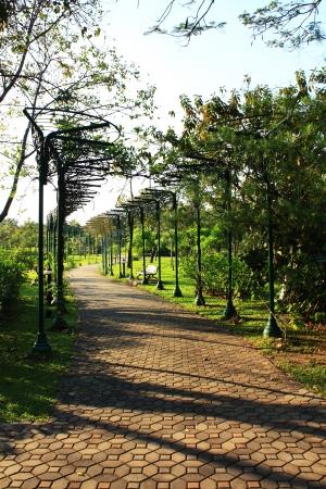 walkway across the park Stock Photo - 17190795