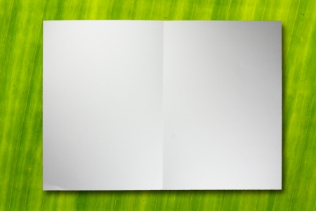 blank folded paper on banana leaf texture photo