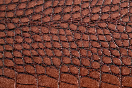 Artificial crocodile skin texture Stock Photo - 25038403