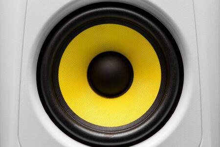 disco speaker: audio speaker