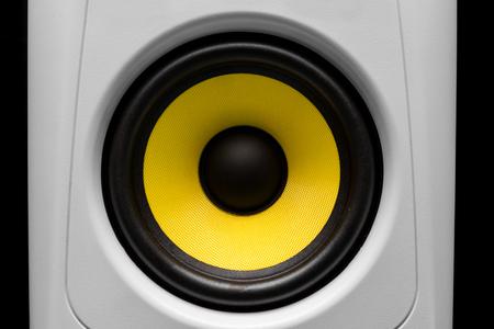 audio: audio speaker