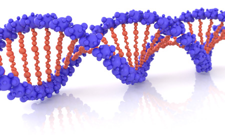 Diagonal DNA chain against white background. 3d image renderer