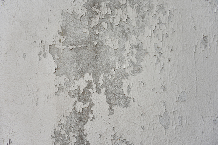 decadent: cement wall