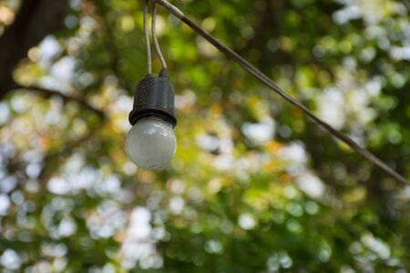 Halogen bulbs hanging in a tree during the festival. Imagens