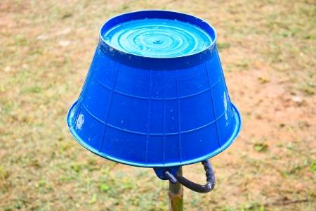 bucket water: Cubo de agua azul invertido en el jard�n