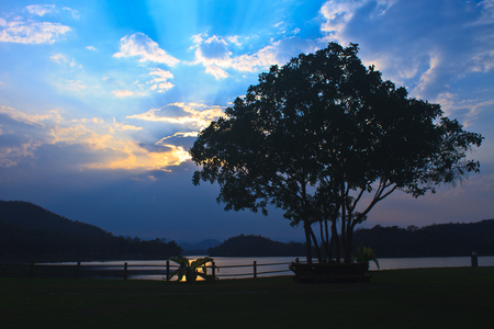 Tree and Sunset at lake, Kaeng Krachan Dam on silhouette photo