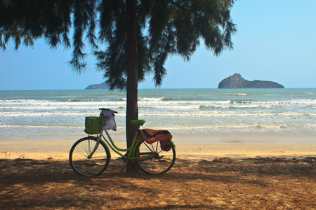 Bicycle with tree at the beach, Thailand photo