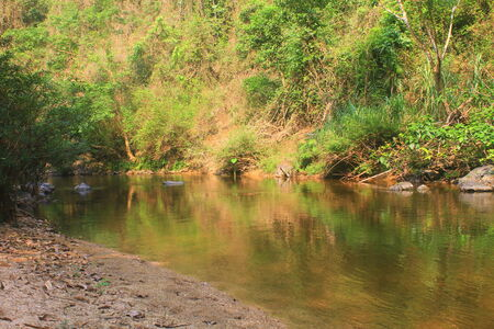 evergreen forest: River in deep forest, river in evergreen forest in Thailand  Stock Photo