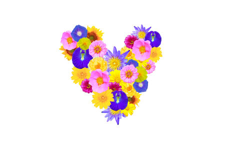 garden flowers shaped heart concept isolated on white background photo