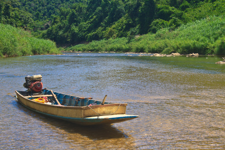 evergreen forest: River in deep forest, river in evergreen forest with boat