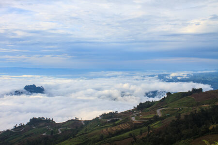 sea of fog with forests as foreground on mountain photo