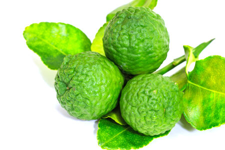 Group of kaffir Lime or Bergamot fruit on white background.  photo