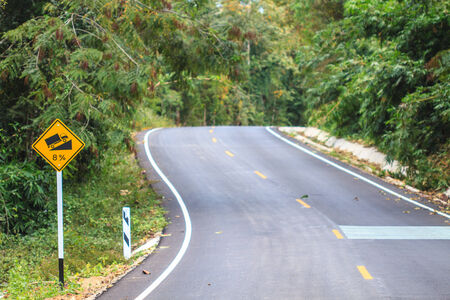 Road in a green forest, national park Stock Photo