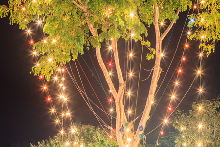 electric avenue: Bulbs on the tree, Illuminated decoration of trees at night  Christmas decoration  New Year decoration