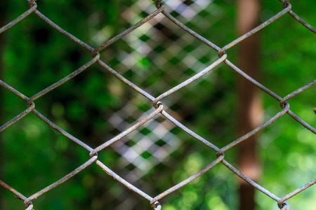 Close up wire mesh steel with natural background Stock Photo