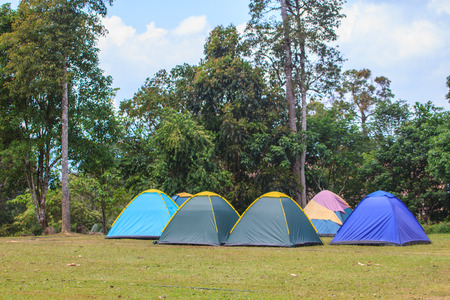campground: Camping in the wilderness, tent on campground in morning