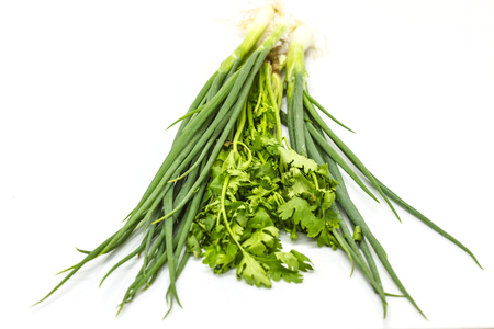 spring onions: bunch of fresh cilantro and Spring onions on white background Stock Photo