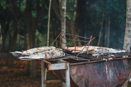 salmo: Grilling fish on framfire, cooking in garden