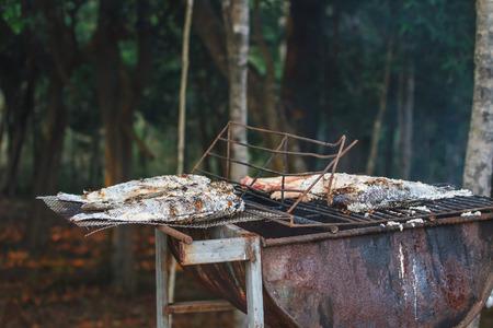 salmo trutta: Grilling fish on framfire, cooking in garden