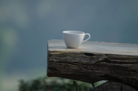 hot coffee on the old log with nature background Standard-Bild