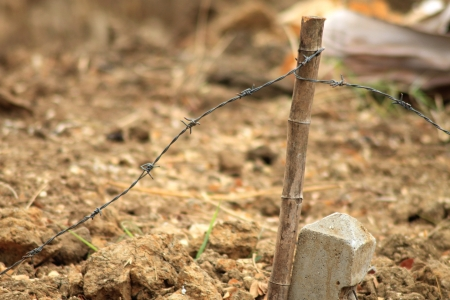 Old rural barb wire and fence on the ground photo