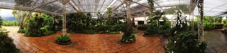 Panorama Orchids Garden