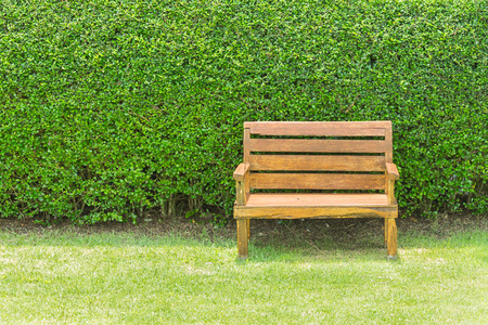 Wooden chair on green plant wall background Stock Photo