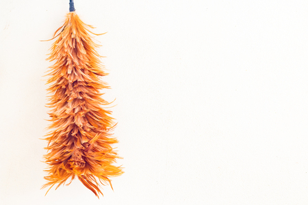 duster: Feather duster on yellow concrete wall background Stock Photo