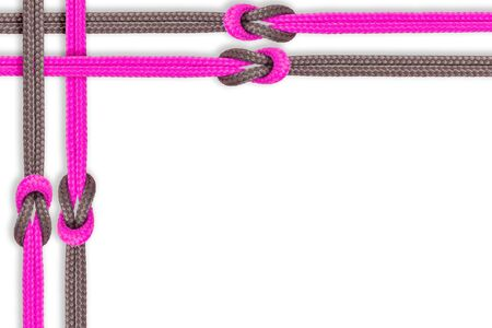 connective: Connected concept. Different ropes tied  isolate on white background