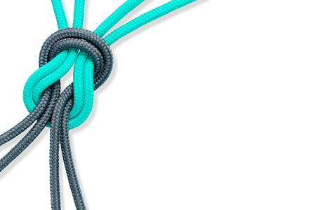 connective: Connected concept. Different ropes tied isolate on white